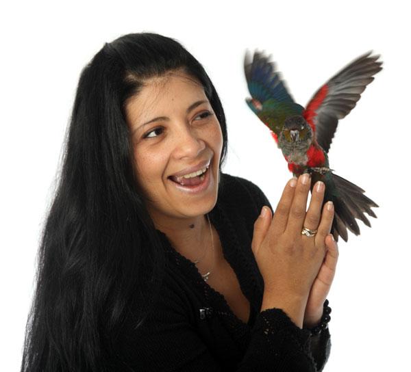 vogeltraining